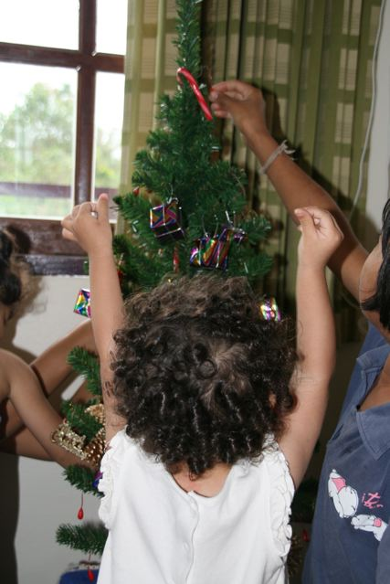 Decorating the Christmas tree 4