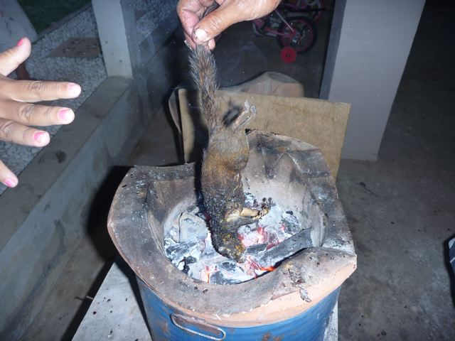 how to cook a snake on a fire