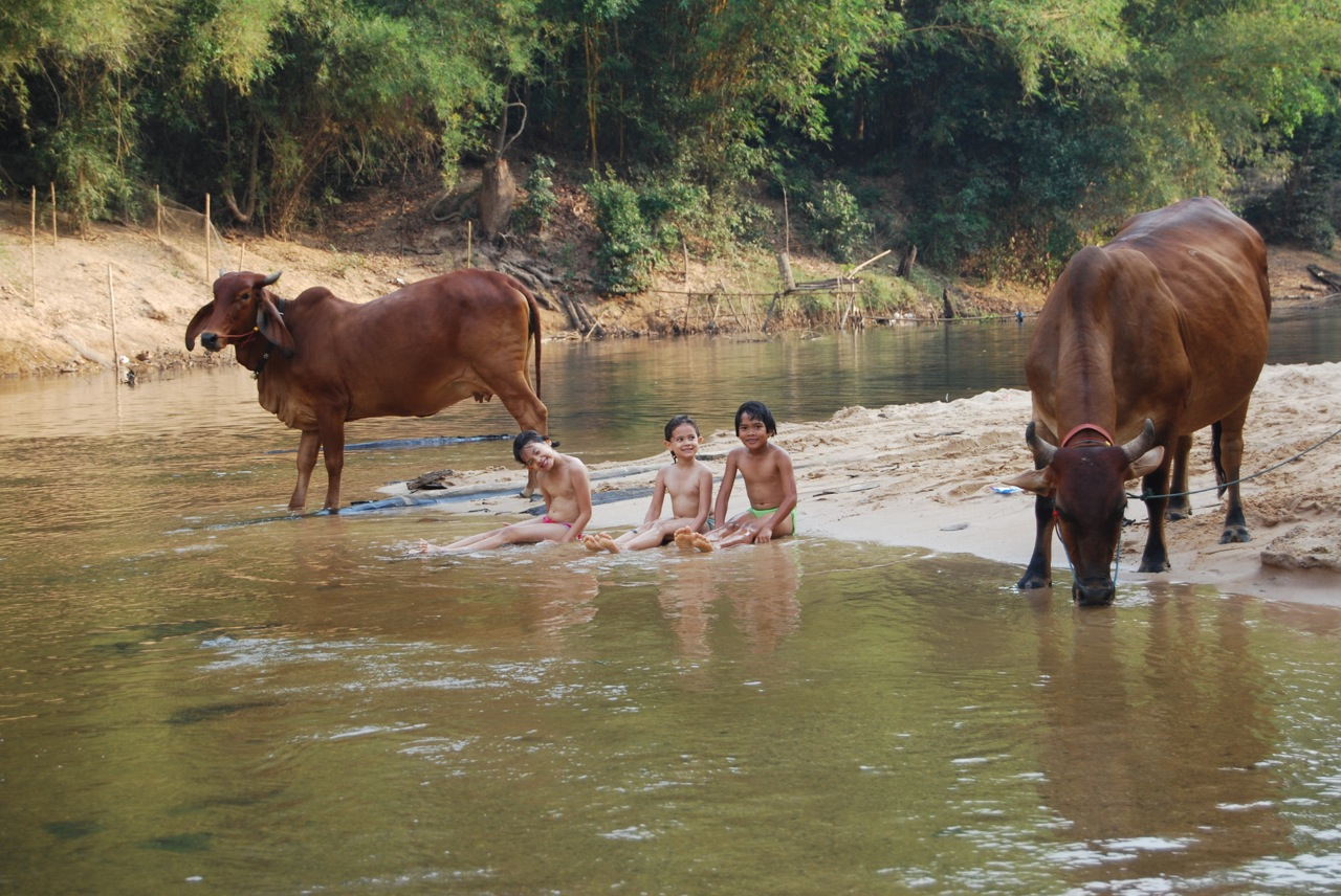I have saved this one for last as it is my favourite. This is at the end of a hot day so the kids went for a swim. Hannake captured the moment when my brother in law was returning to the village with his two cows that had been out grazing all day on the other side of the river.