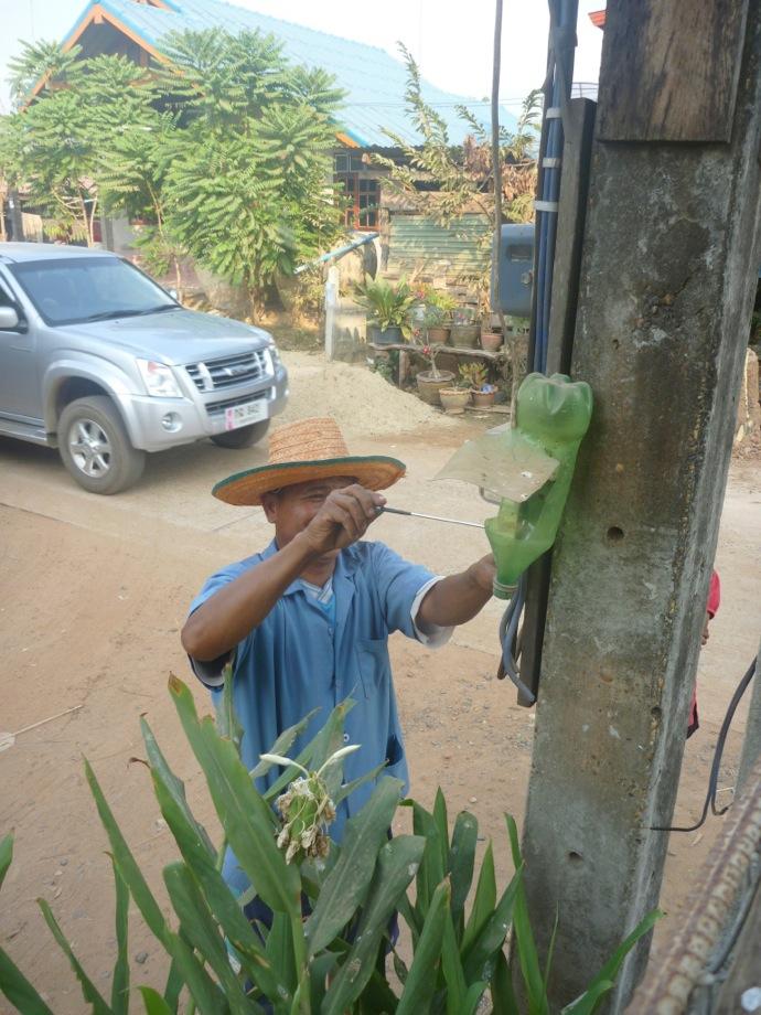 power poles in Thailand