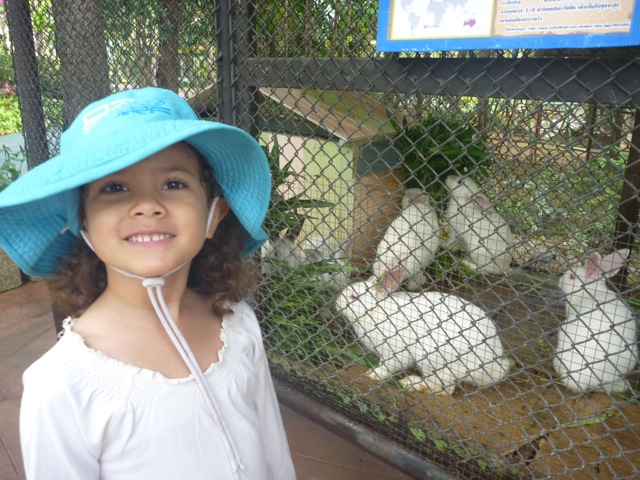 Every little girl loves a fluffy white rabbit!
