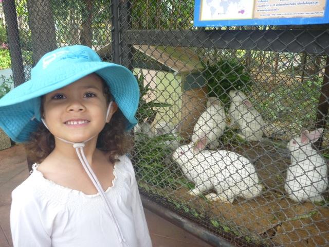 Every little girl loves a fluffy white rabbit!