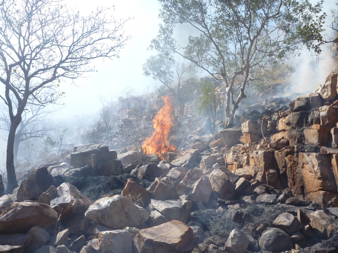 Kachana Station fighting bush fires