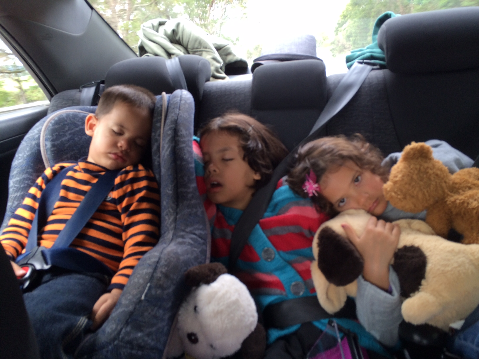 Kids sleeping in car